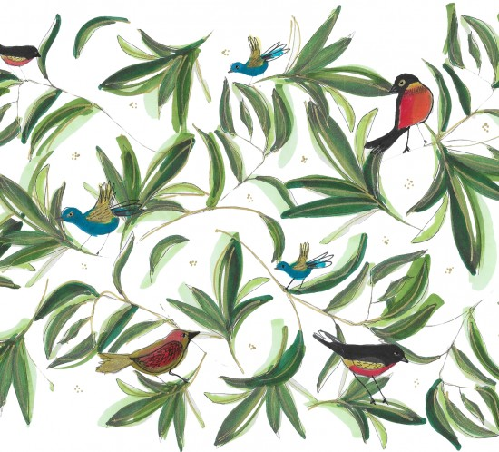 oiseaux site