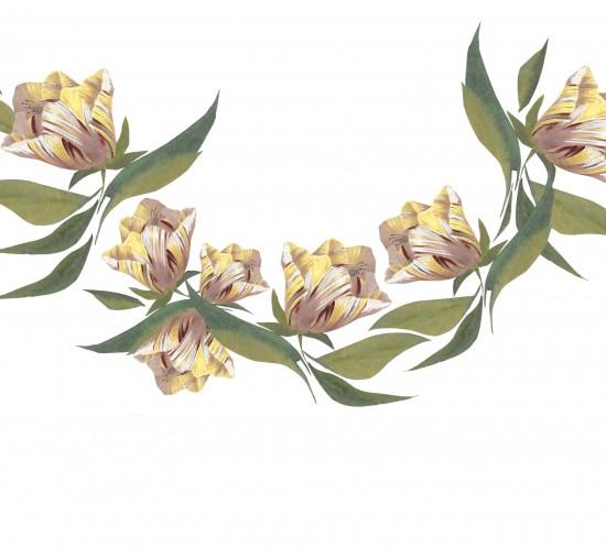 tulipes vintage basse def